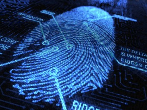 photo credit: Digital Fingerprint